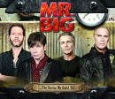 MR. BIG - STORIES WE COULD TELL (JPN)
